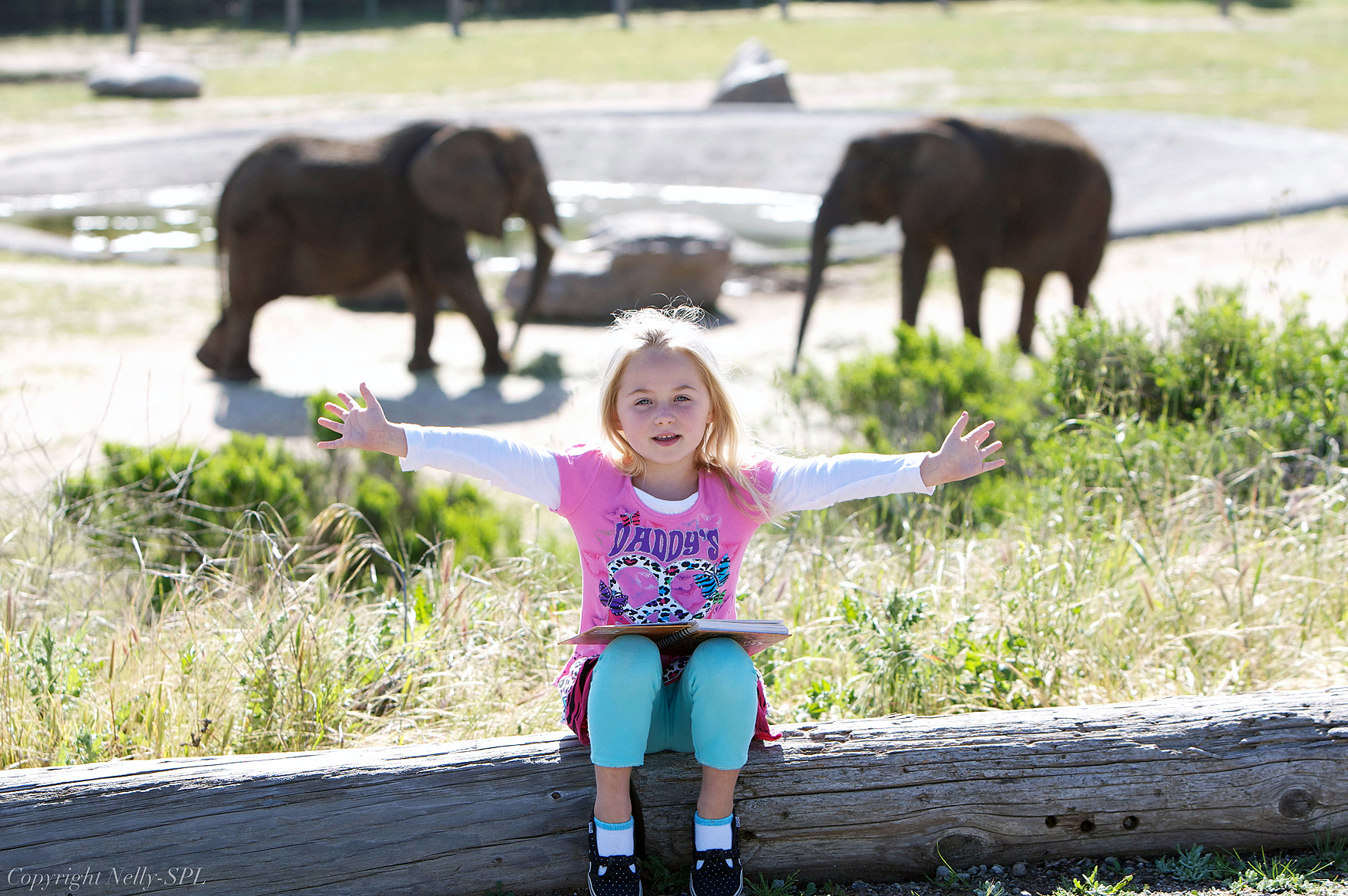 Kiala and the elephants