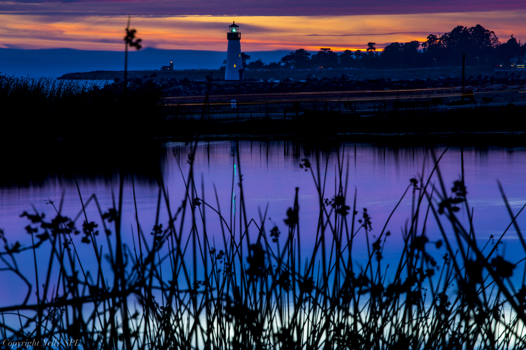 lighthouse and reeds